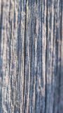 Weathered wooden texture Royalty Free Stock Image