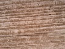 Weathered Woodgrain background Royalty Free Stock Image