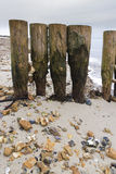 Weathered and worn wooden groynes with pebbles jammed between th. On Lepe Beach, Hampshire, England, United Kingdom Stock Photography