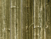 Weathered yellow wooden fence texture with nails. Stock Images