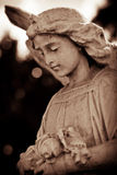 Weathered young angel in sepia Royalty Free Stock Image