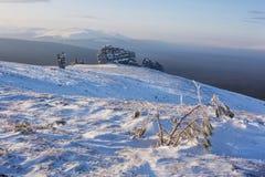 Weathering posts on Manpupuner plateau, Russia. Pine tree and weathering posts on the Manpupuner plateau, Komi Republic, Russia Stock Image