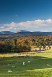 Weatherlam and The Old Man of Coniston in Autumn Royalty Free Stock Photo