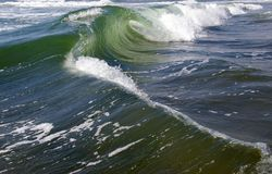 Weatherring a storm wave. Royalty Free Stock Image