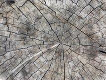 weathersa drewna obrazy stock