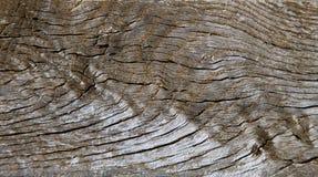 weathersa drewna Obraz Stock