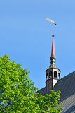 Weathervan eof Koenigsberg Cathedral. Kaliningrad, Russia Stock Image