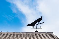 Weathervane Obraz Royalty Free