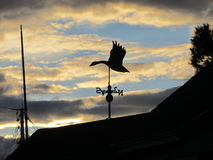 Weathervane Stockfoto