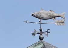 Weathervane de los pescados Imagen de archivo libre de regalías