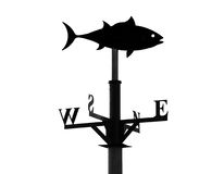 Weathervane in the form of a fish Royalty Free Stock Photo