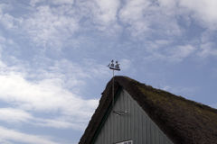 Weathervane on gable Royalty Free Stock Images