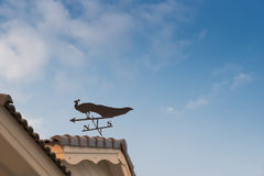 Weathervane z pawiem Obraz Stock