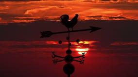 Weathervanejonge haan tegen rode zonsondergang stock videobeelden