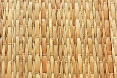 weave тростника цвета Стоковые Изображения RF