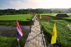 Weave bamboo bridge toward rice fields. Weave bamboo bridge `ZU TONG PE` lay toward the green rice fields at Mae Hong Son, Thailand Stock Photos