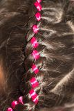 Weave braids in a beauty salon. Photo in the studio Royalty Free Stock Image