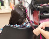 Weave braids in a beauty salon. Photo in the studio Stock Image