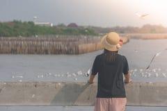 Weave e posição vestindo do chapéu da mulher na ponte concreta, na ela que olham o mar e nas gaivotas que voam no centro recreati Foto de Stock