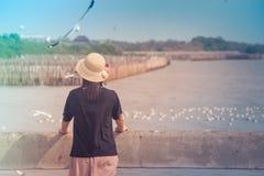 Weave e posição vestindo do chapéu da mulher na ponte concreta, na ela que olham o mar e nas gaivotas que voam no centro recreati Imagem de Stock