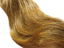 Weave of gingery hair Stock Images