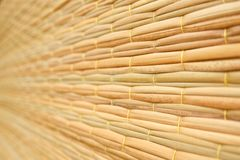 Weave pattern of reed mat Royalty Free Stock Image