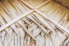 Weave secado das folhas Foto de Stock Royalty Free