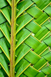 Weaving coconut leaves texture Stock Photos