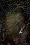 Web Stock Afbeelding