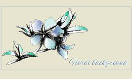 Background with delicate painted flowers. Postcard, text frame. Spring contour flowers, watercolor. Vector illustration stock illustration