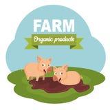 Farm scene organic products label. Flat vector illustration. Farm scene organic products label. Pigs standing in the mud. Flat vector illustration stock illustration