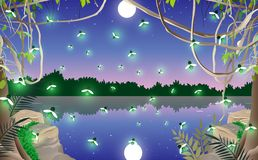 Landscape of jungle. Light of firefly in the swamp stock illustration