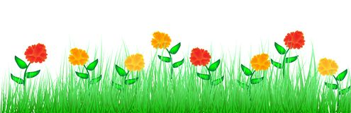 Green Grass With Colorful Flowers royalty free illustration
