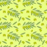 Olive branches and fruits seamless vector pattern. For design, decoration. packaging, fabrics vector illustration