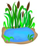 small lake with reeds on the shore for landscape design isolated on a white background. Cartoon vector close-up illustration. royalty free illustration