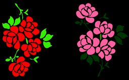 Web. Solitary wild rose with black background royalty free illustration
