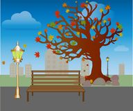 Leaf fall in autumn park. Bench under trees with yellow leaves Vector royalty free illustration