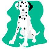 dalmatian dog. Dalmatian sitting with tongue out royalty free illustration