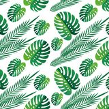 Tropical  green leaves seamless pattern white background. Exotic wallpaper. tropical leaves. nature, background print vector illustration