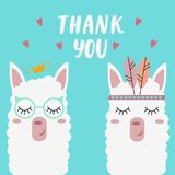 Cute llamas on a mint background with the words `thank you`. stock illustration