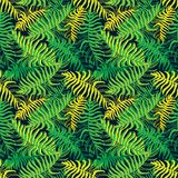 Palm. Seamless pattern from tropical plant leaves. royalty free illustration