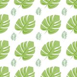 Vector seamless pattern with tropical leaves.White background. vector illustration