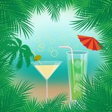 Vector summer background with palm trees, beach ,sea,cocktails framed with palm branches vector illustration
