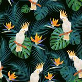 Trendy tropical pattern with parrots and  exotic flowers. Vector seamless texture. royalty free illustration