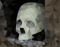 Human skull stock illustration
