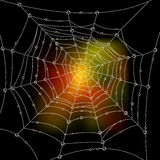Web. Autumn background with a spider's web Stock Photos