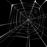Web. Spider web over black background vector illustration