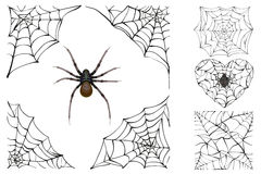 Web And Poisonous Spider. Set Halloween Accessory Royalty Free Stock Photo