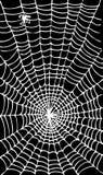 Web background LXIV. Web background. Eau-forte illustration stock illustration