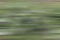 Web backgrounds and textures. Wallpapers, web textured with the color of grass Royalty Free Stock Photos